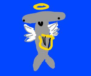Hammerhead shark is an angel