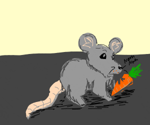 mouse eats carrots
