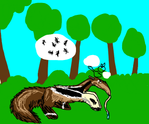 Hungry anteater
