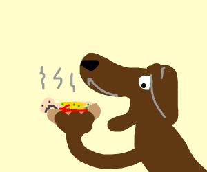 dog eating hotman