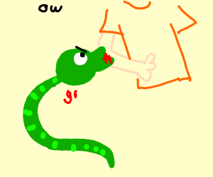 Snake with a giant eye bites someone