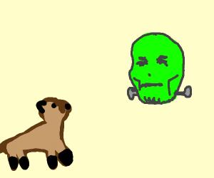 Ferret loves Frankenstein
