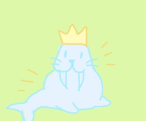 Walrus is king
