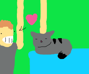 Elon musk loves cats