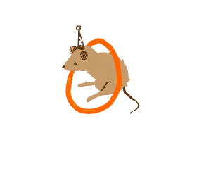 mouse with party hat floating in life ring