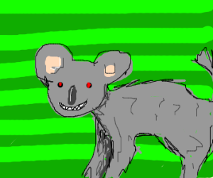 an evil koala wolf hybrid