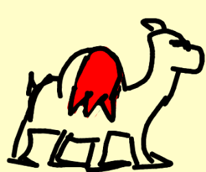 A camel with mail