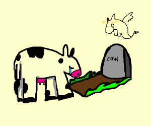A cow mourning over another cow's grave