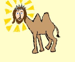 camel jesus