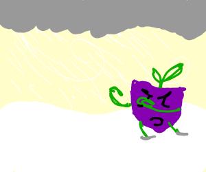 Turnip in a Snowstorm