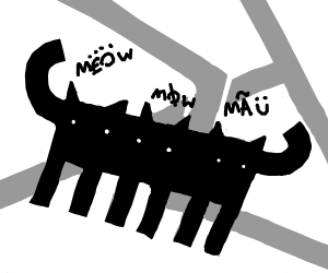 Three conjoined cats want to be seprate