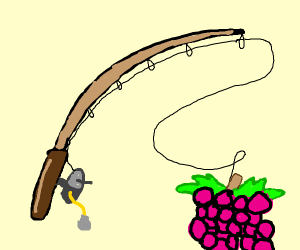 Fishing for Grapes
