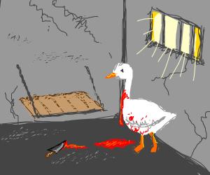 A bleeding goose in jail