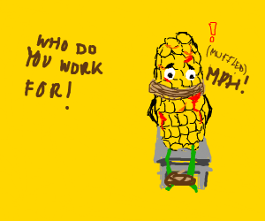 the corn is being questioned