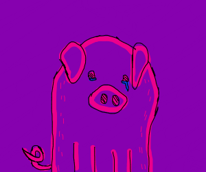 Sad pig