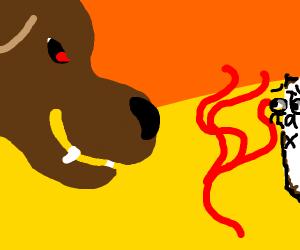 dog burns tax receipts