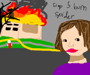 Step 4: Burn the house 'cause of a spider
