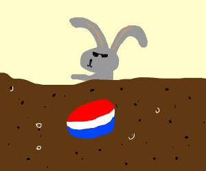 Bunny enjoying pepsi sea