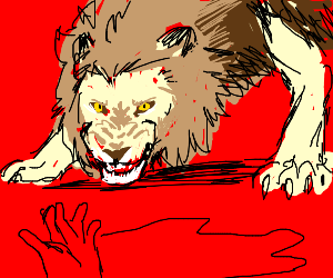 lion ready to kill people