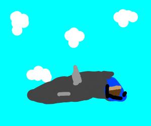 Vase Pilot