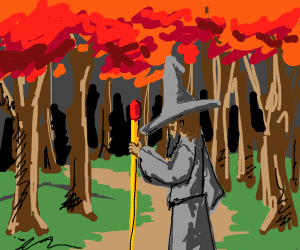 Wizard travels through forest
