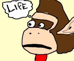Donkey Kong has an existential crisis