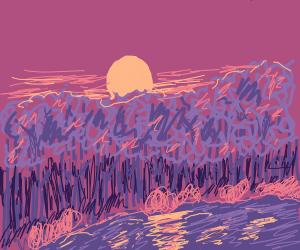 Forrest at sundown