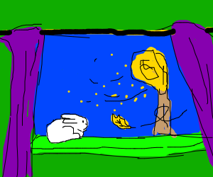 Bunny warching a falling leaf by the window