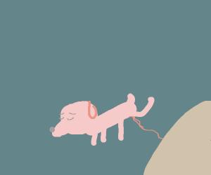 dog peeing on the sun