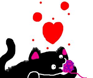 Black cat eating yarn