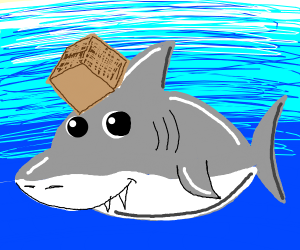 Shark with box on its head