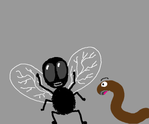a scary fly & a scared earthworm
