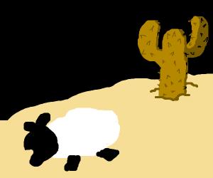 sheep runs away from brown cactus