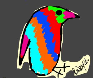 Bold Parakeet
