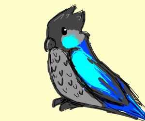 Cartoon Parakeet