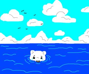 Emotional Polar Bear Swim