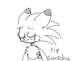 SONICHU WILL BE IN ALL OF OUR HEARTS!