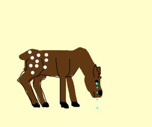 bambi crying