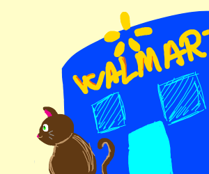 a brown cat at the walmart checkout