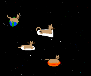 cats in space on pillow planets (one reading)