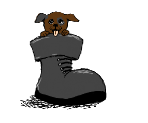 Brown puppy in a grey boot