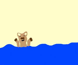 Faun in water
