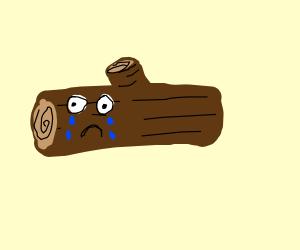 sad log