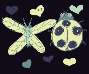 Lady bug & dragonfly in love tonight