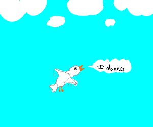 """seagull is like """"i donno"""", shrugs mid air"""