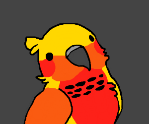 A yellow orange and red bird (amazing drawing
