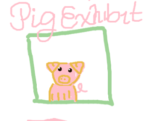 pig in a zoo