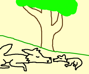 wolf sleeping with pup under tree