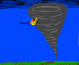 Duck in a Storm
