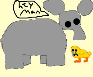 Elephant confronts sad duck